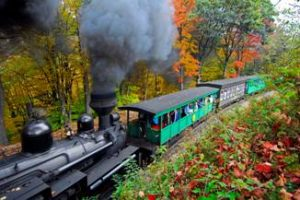 A train moves through a scenic forest in Autumn